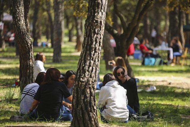 El 9 de Noviembre y el 29 de septiembre fiestas locales en Las Rozas para el año 2021