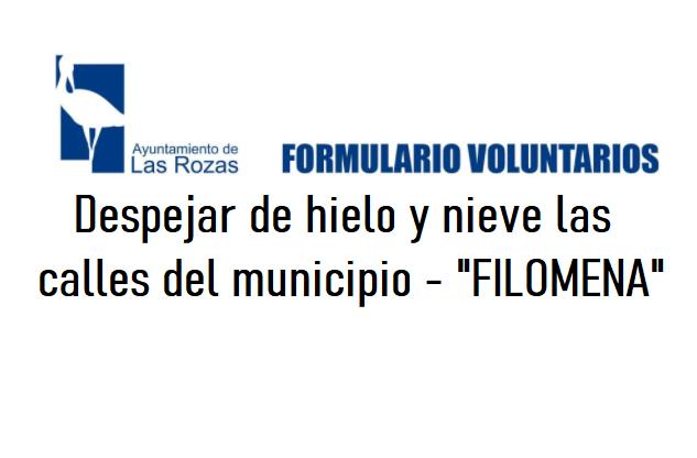 FORMULARIO VOLUNTARIOS - Despejar de hielo y nieve las calles del municipio